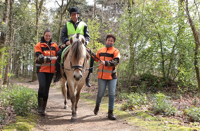 paardrijden voor 1 keer
